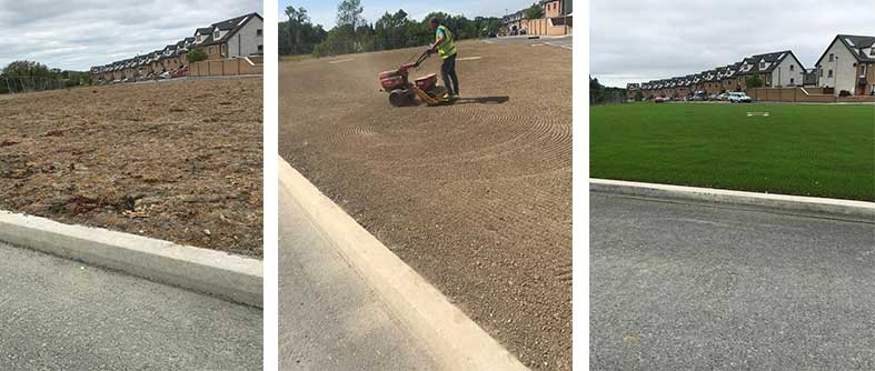 Rotavating and seeding lawns
